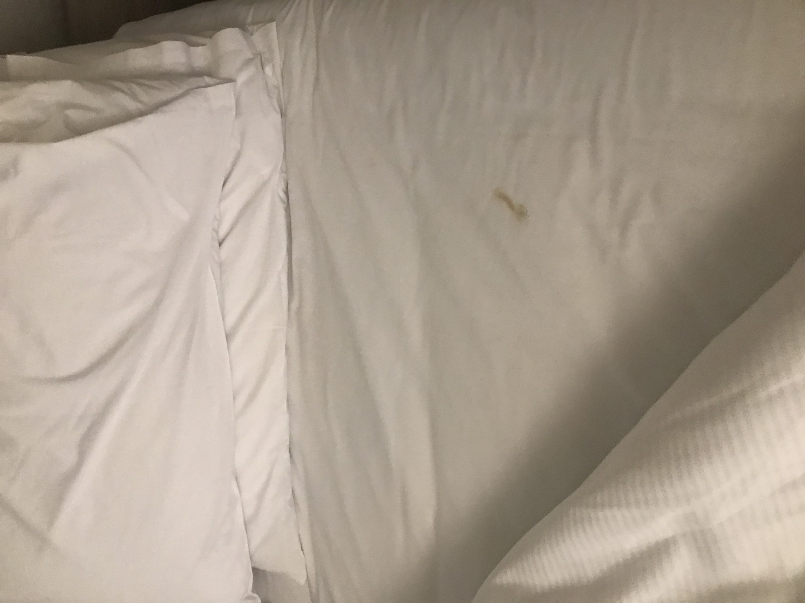 Brown mark on white sheet when I pulled back the bedding